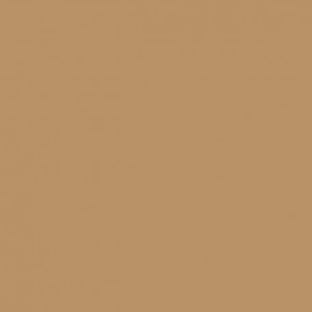 KEIM Lignosil®-Color teintes foncées