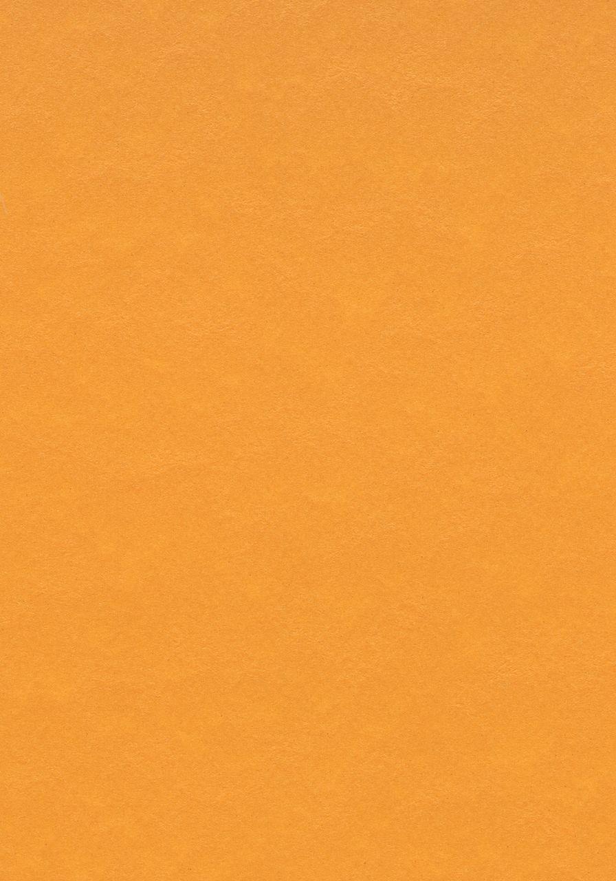 3354 Pumpkin yellow