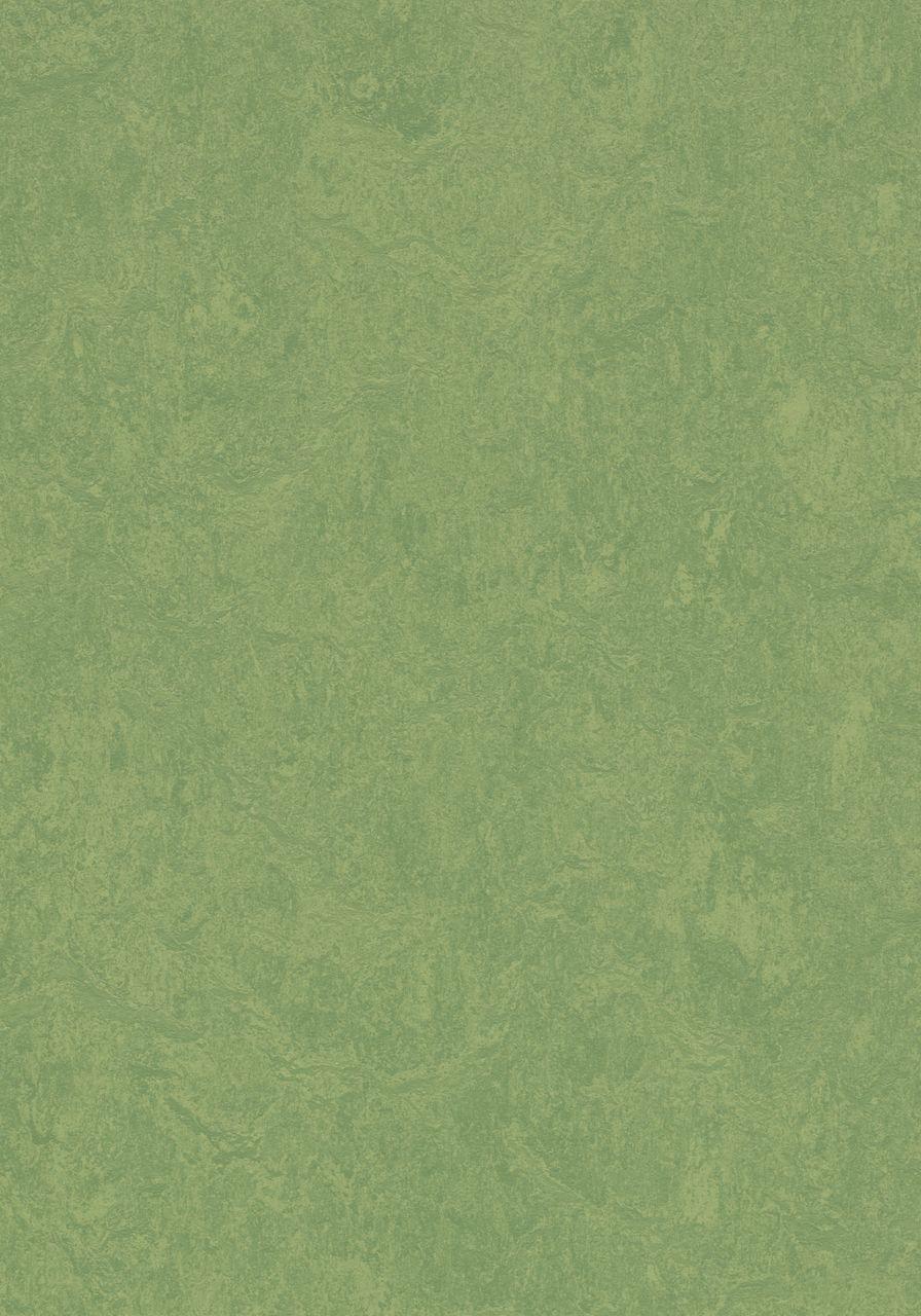3260 Leaf
