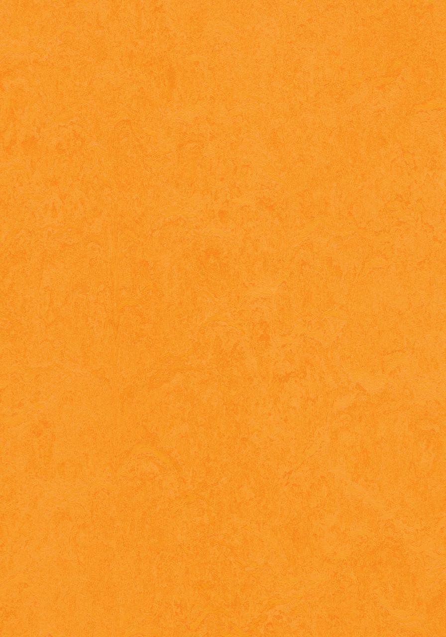 3262 Marigold