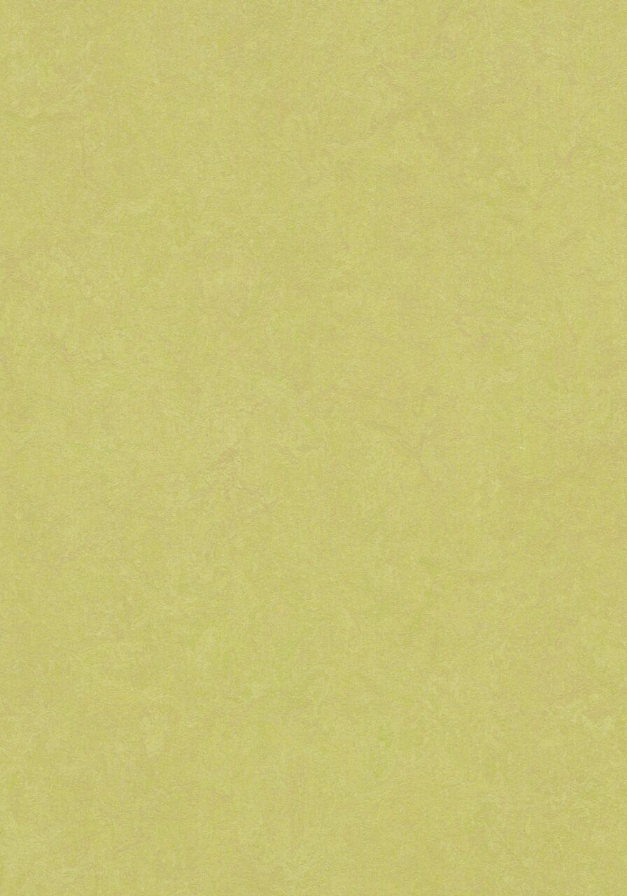 3885 Spring buds