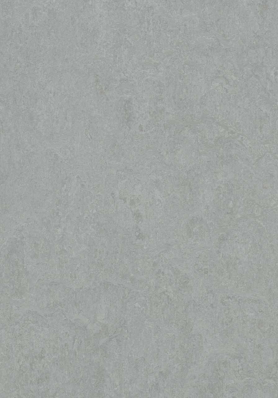 3889 Cinder
