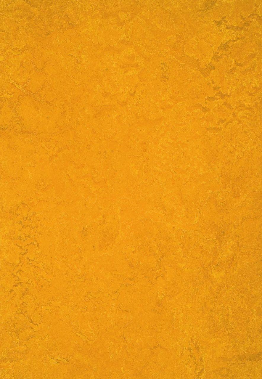312535 Golden sunset