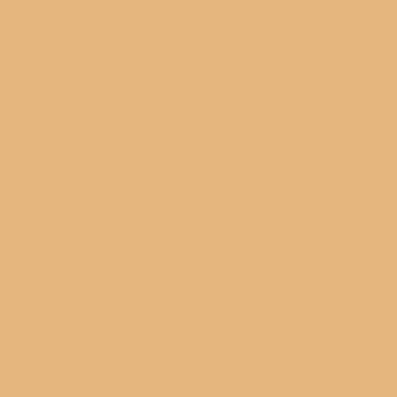 9051 Exclusiv