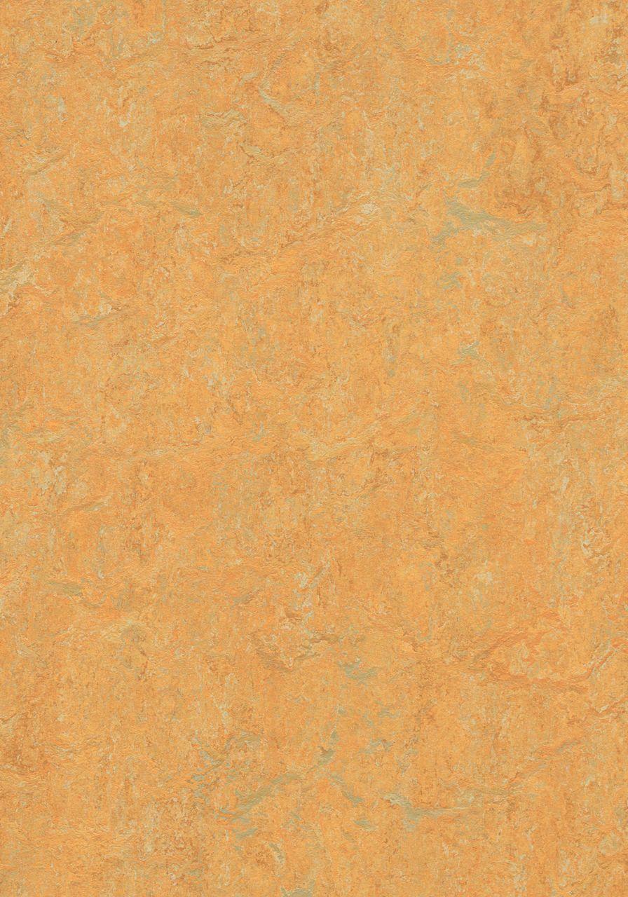 3847 Golden Saffron