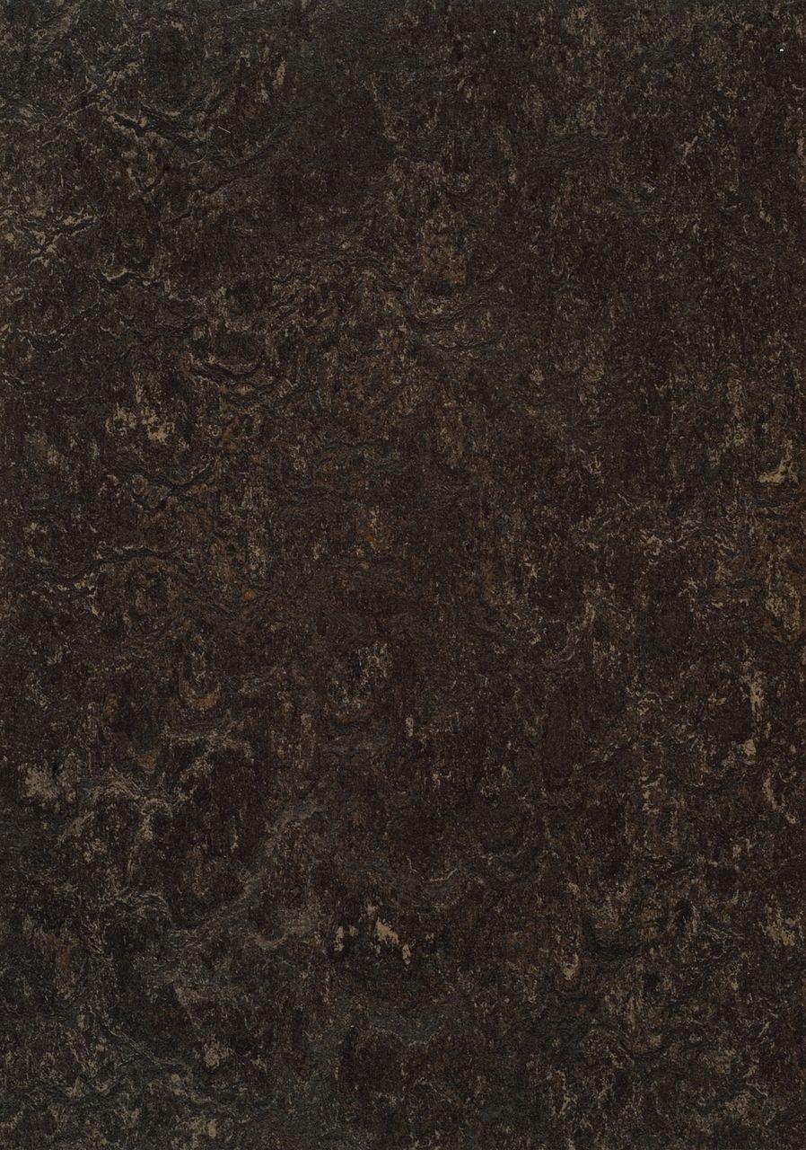 323635 Dark Bistre