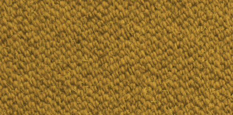 Antares jaune