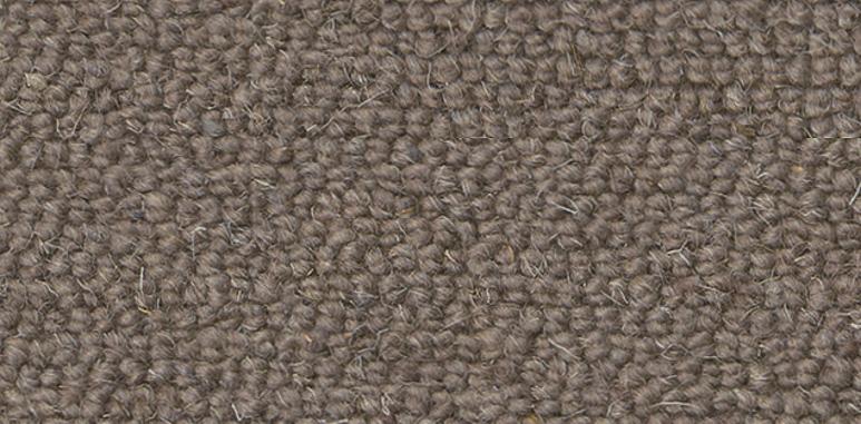 Antares brun